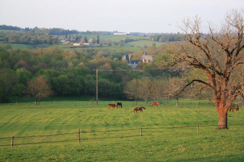 92-vue-du-gite-chevaux-chateau-ferme-de-petrus.jpg