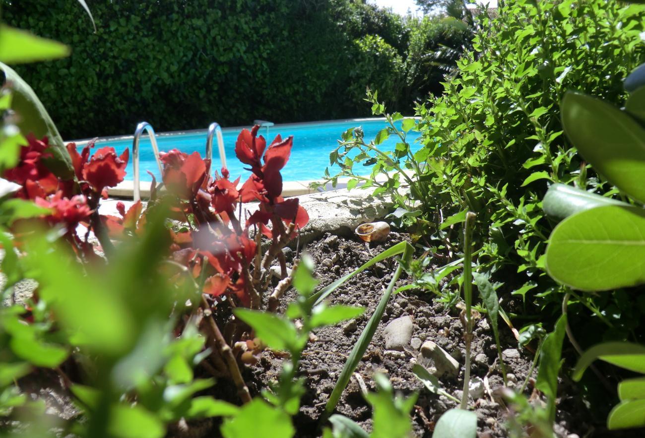 location vacances Vedène